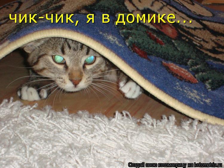 http://kotomatrix.ru/images/lolz/2009/04/09/bb.jpg