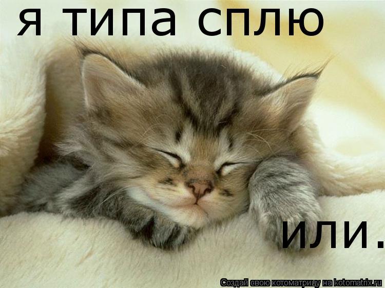 картинки сплю