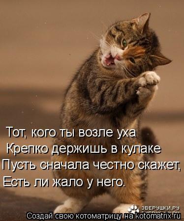 Котоматрица: Тот, кого ты возле уха Крепко держишь в кулаке Пусть сначала честно скажет, Есть ли жало у него.