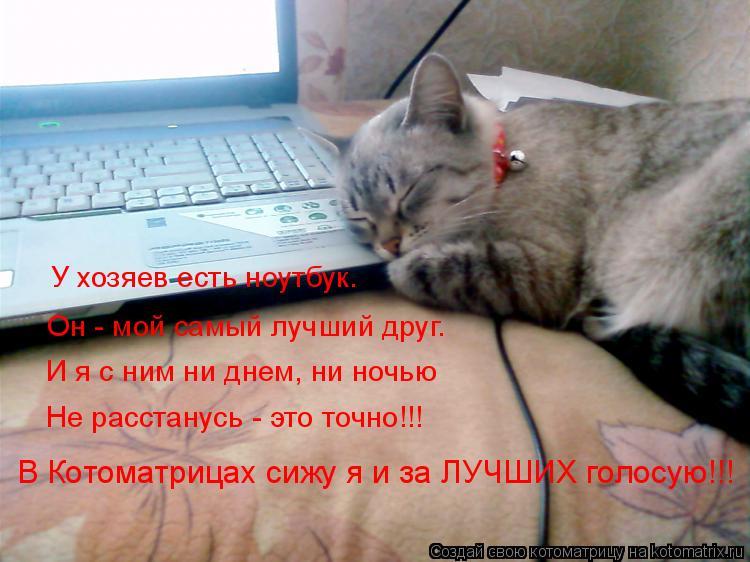Котоматрица: У хозяев есть ноутбук. Он - мой самый лучший друг. И я с ним ни днем, ни ночью Не расстанусь - это точно!!! В Котоматрицах сижу я и за ЛУЧШИХ голо