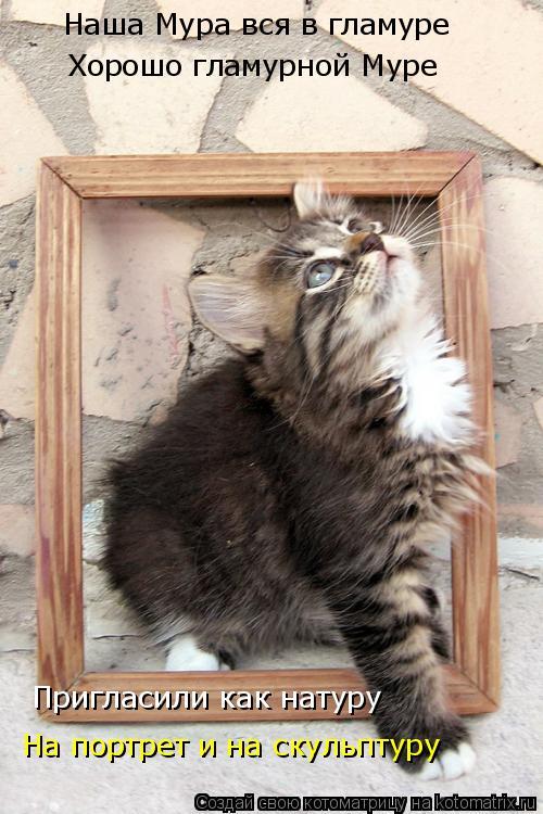 Котоматрица: Наша Мура вся в гламуре Хорошо гламурной Муре Пригласили как натуру На портрет и на скульптуру