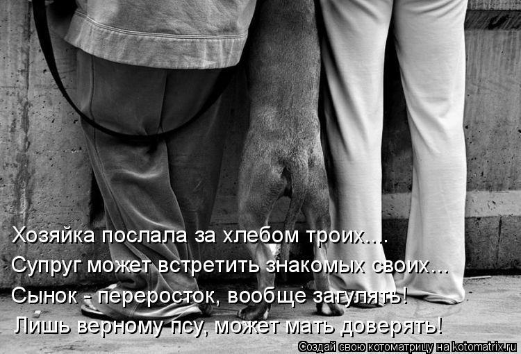 Котоматрица: Хозяйка послала за хлебом троих.... Супруг может встретить знакомых своих... Сынок - переросток, вообще загулять! Лишь верному псу, может мать