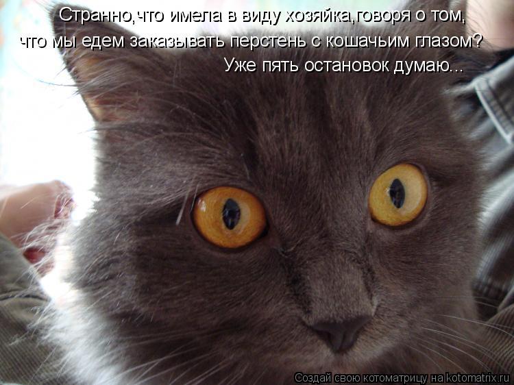 Котоматрица: Странно,что имела в виду хозяйка,говоря о том, Странно,что имела в виду хозяйка,говоря о том, что мы едем заказывать перстень с кошачьим глаз