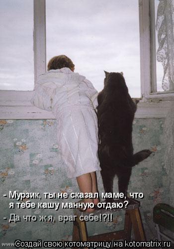 Котоматрица: - Мурзик, ты не сказал маме, что я тебе кашу манную отдаю? - Да что ж я, враг себе!?!!