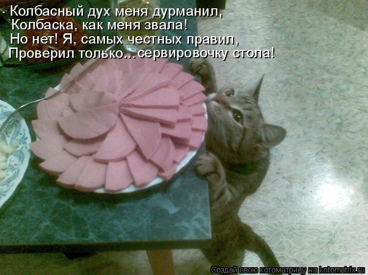 Котоматрица: Колбасный дух меня дурманил,  Колбаска, как меня звала! Но нет! Я, самых честных правил, Проверил только... сервировочку стола!