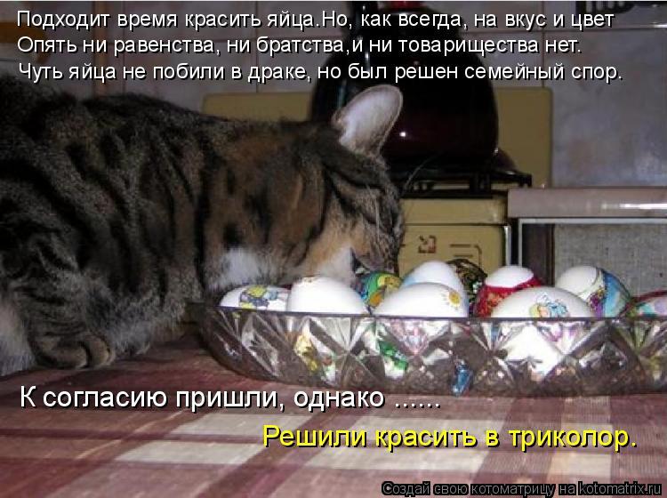 Котоматрица: Подходит время красить яйца…Но, как всегда, на вкус и цвет  Опять ни равенства, ни братства,и ни товарищества нет. Чуть яйца не побили в драк