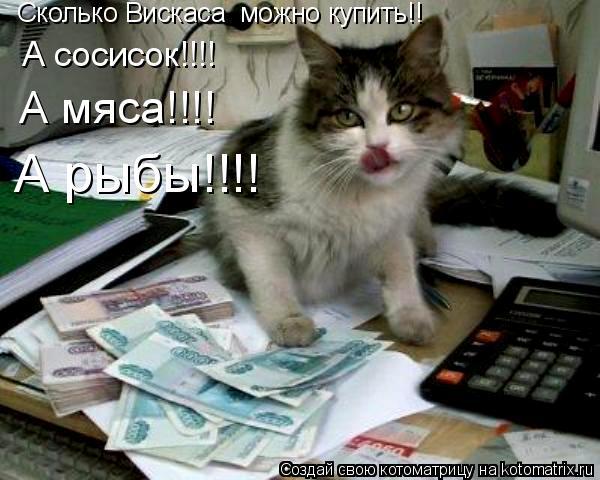Котоматрица: Сколько Вискаса  можно купить!! А сосисок!!!! А мяса!!!! А рыбы!!!!