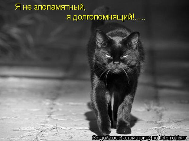 Котоматрица: Я не злопамятный, я долгопомнящий!.....