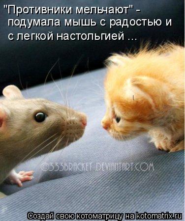 Мышонок знакомства