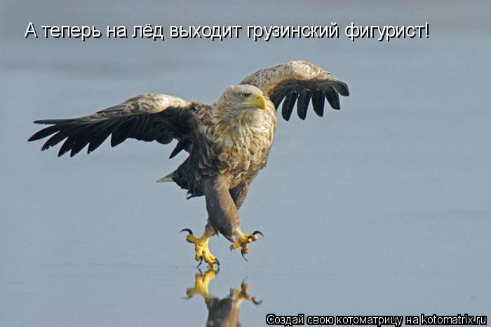 Подборка прикольных фоток 354 (93 фото)