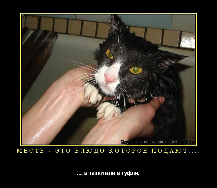 http://kotomatrix.ru/images/lolz/2009/04/19/Tk.jpg