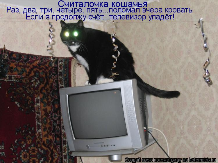 Котоматрица: Считалочка кошачья Раз, два, три, четыре, пять...поломал вчера кровать Если я продолжу счёт...телевизор упадёт!