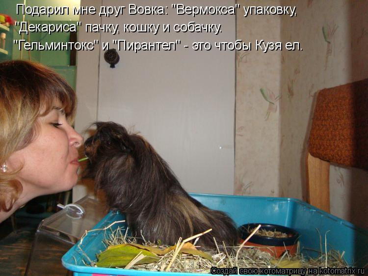 """Котоматрица: Подарил мне друг Вовка: """"Вермокса"""" упаковку, """"Декариса"""" пачку, кошку и собачку. """"Гельминтокс"""" и """"Пирантел"""" - это чтобы Кузя ел."""