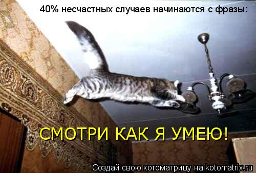 Котоматрица: 40% несчастных случаев начинаются с фразы: СМОТРИ КАК Я УМЕЮ!