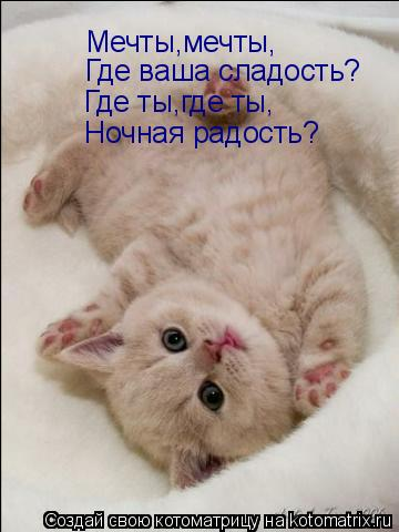 http://kotomatrix.ru/images/lolz/2009/04/21/TL.jpg