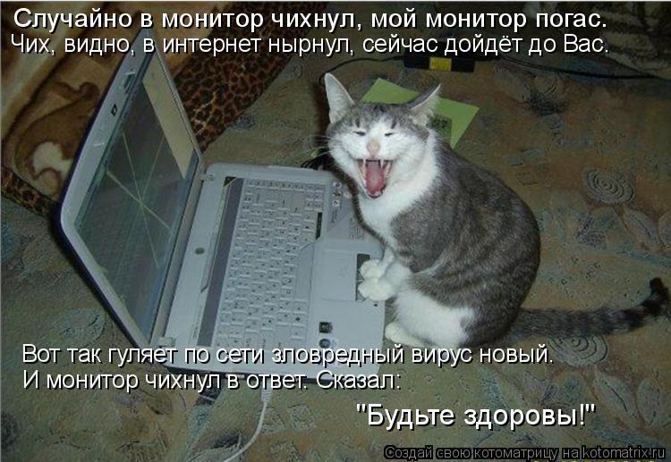 """Котоматрица: Случайно в монитор чихнул, мой монитор погас. Чих, видно, в интернет нырнул, сейчас дойдёт до Вас. И монитор чихнул в ответ. Сказал: """"Будьте зд"""