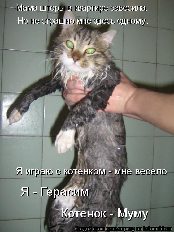 Котоматрица: Мама шторы в квартире завесила… Но не страшно мне здесь одному.. Я играю с котенком - мне весело Я - Герасим Котенок - Муму