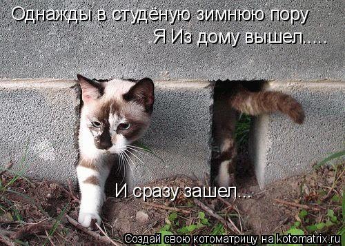 Котоматрица: Однажды в студёную зимнюю пору И сразу зашел... Я Из дому вышел.....