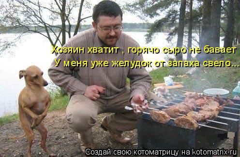 Котоматрица: У меня уже желудок от запаха свело... Хозяин хватит , горячо сыро не бавает
