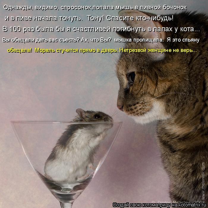 Однажды может быть спросонок попала мышь в пивной бочонок