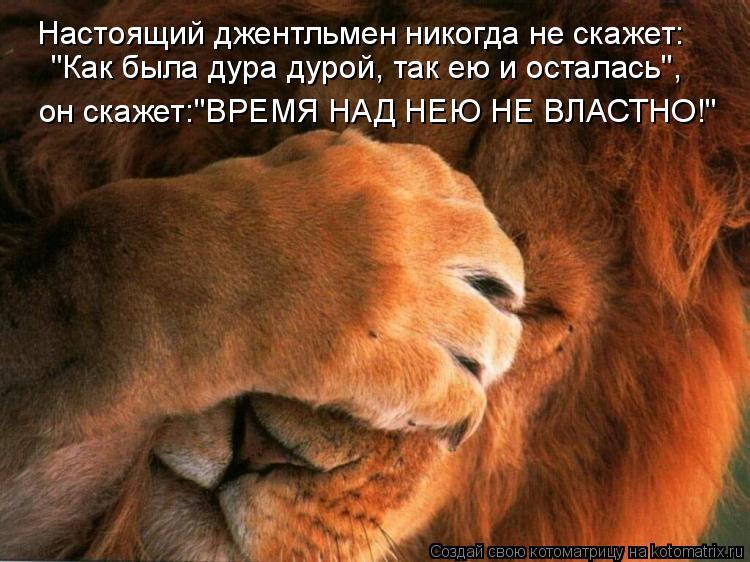 """Котоматрица: Настоящий джентльмен никогда не скажет: """"Как была дура дурой, так ею и осталась"""", он скажет:""""ВРЕМЯ НАД НЕЮ НЕ ВЛАСТНО!"""""""