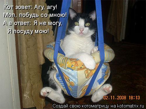 Котоматрица: Кот зовет: Агу, агу! Мол, побудь со мною! А в ответ: Я не могу, Я посуду мою!