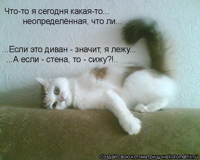Котоматрица: ...Если это диван - значит, я лежу... ...А если - стена, то - сижу?!.. Что-то я сегодня какая-то... неопределённая, что ли...