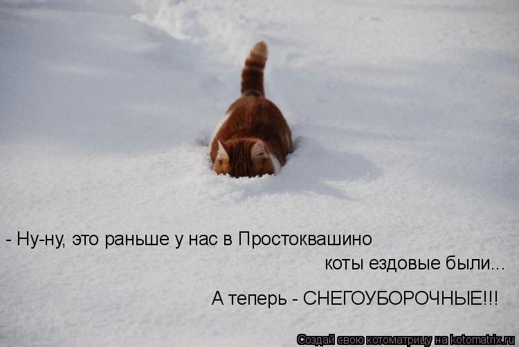 Котоматрица: - Ну-ну, это раньше у нас в Простоквашино коты ездовые были... А теперь - СНЕГОУБОРОЧНЫЕ!!!