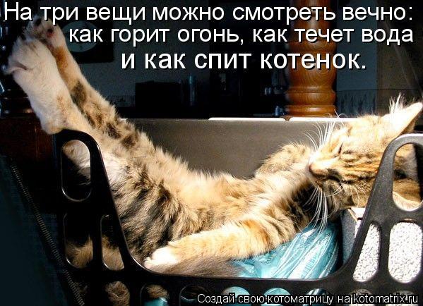 Котоматрица: На три вещи можно смотреть вечно:  как горит огонь, как течет вода и как спит котенок.