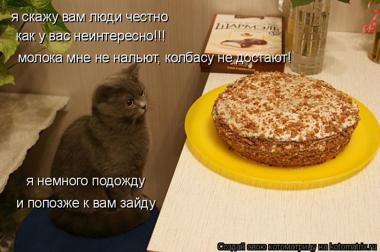 Котоматрица: я скажу вам люди честно как у вас неинтересно!!!  молока мне не нальют, колбасу не достают! я немного подожду и попозже к вам зайду
