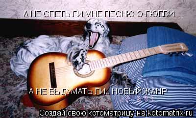 Котоматрица: А НЕ СПЕТЬ ЛИ МНЕ ПЕСНЮ О ЛЮБВИ.... А НЕ ВЫДУМАТЬ ЛИ.. НОВЫЙ ЖАНР