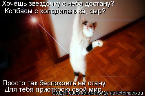 Котоматрица: Хочешь звездочку с неба достану? Колбасы с холодильника, сыр? Просто так беспокоить не стану Для тебя приоткрою свой мир...