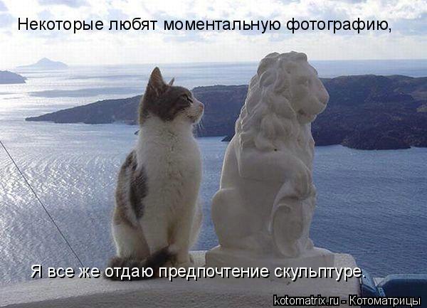 Котоматрица: Некоторые любят моментальную фотографию,  Я все же отдаю предпочтение скульптуре…
