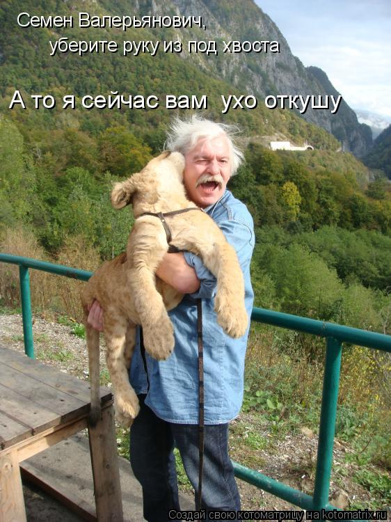 Котоматрица: Семен Валерьянович,  уберите руку из под хвоста А то я сейчас вам  ухо откушу
