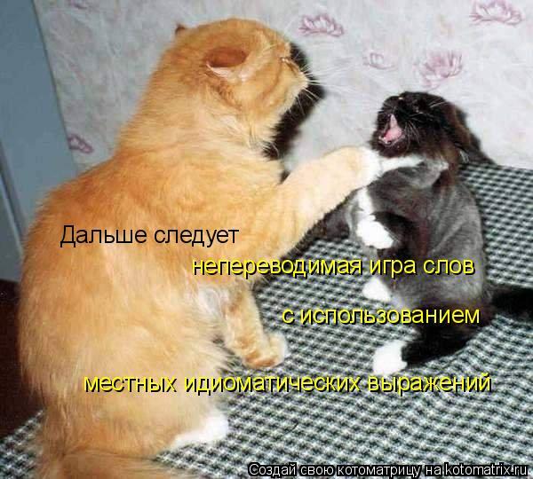http://kotomatrix.ru/images/lolz/2009/04/30/6o.jpg