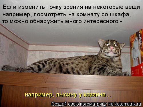Котоматрица: Если изменить точку зрения на некоторые вещи, - например, посмотреть на комнату со шкафа, то можно обнаружить много интересного -  например,
