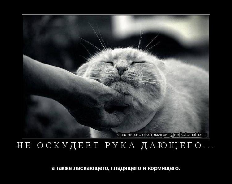 Котоматрица: не оскудеет рука дающего... а также ласкающего, гладящего и кормящего.
