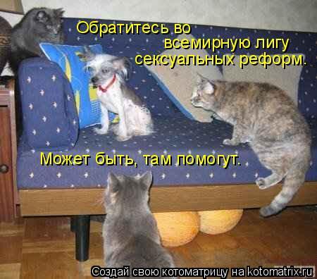 http://kotomatrix.ru/images/lolz/2009/04/30/Lt.jpg