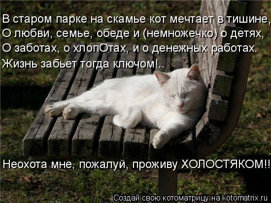 Котоматрица: В старом парке на скамье кот мечтает в тишине, О заботах, о хлопОтах, и о денежных работах. О любви, семье, обеде и (немножечко) о детях, Жизнь з