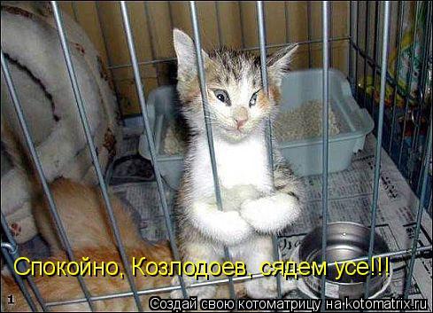 http://kotomatrix.ru/images/lolz/2009/04/30/n0.jpg