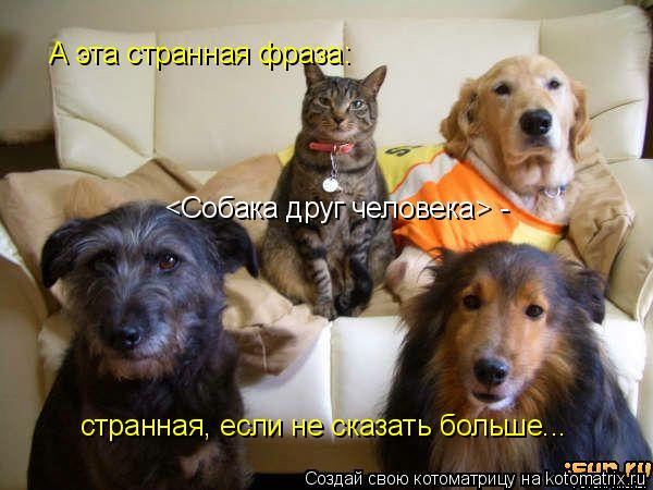 http://kotomatrix.ru/images/lolz/2009/04/30/zo.jpg