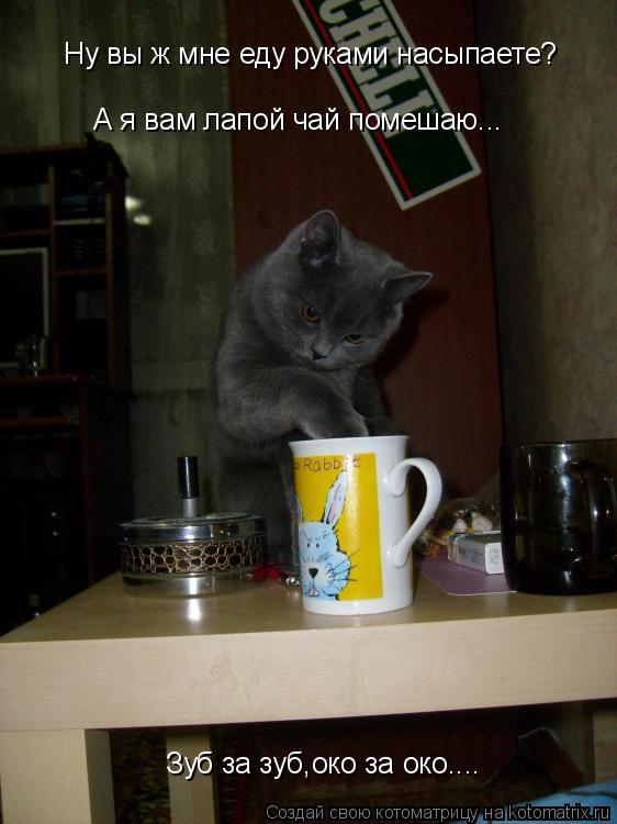 Котоматрица: Ну вы ж мне еду руками насыпаете? А я вам лапой чай помешаю... Зуб за зуб,око за око....
