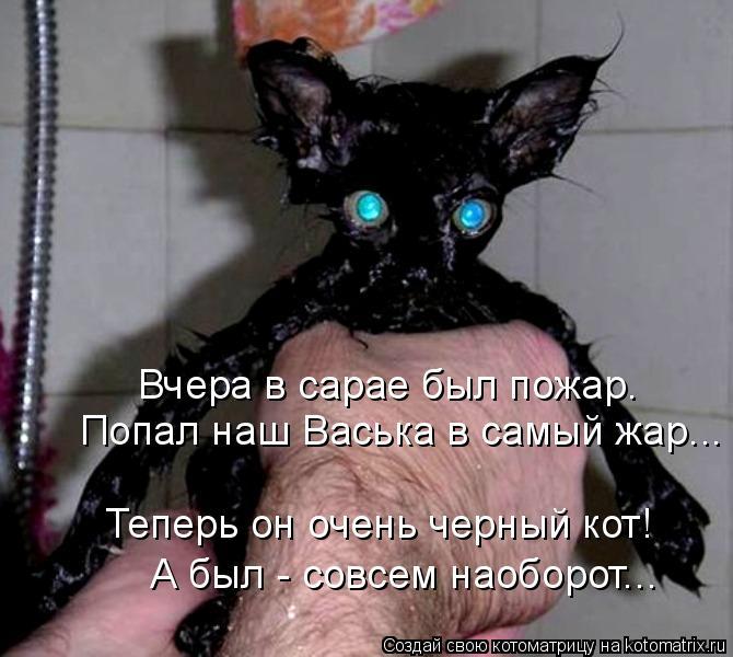 Котоматрица: Вчера в сарае был пожар. Попал наш Васька в самый жар... Теперь он очень черный кот! А был - совсем наоборот...