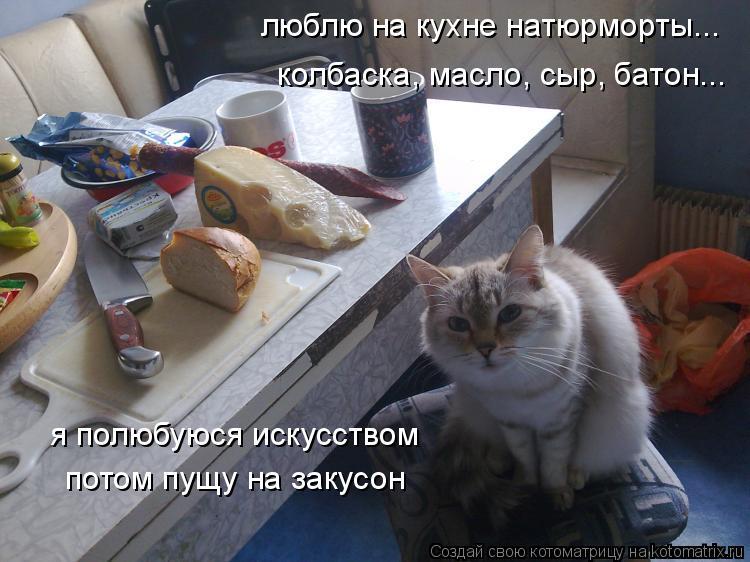 Котоматрица: люблю на кухне натюрморты... колбаска, масло, сыр, батон... я полюбуюся искусством  потом пущу на закусон