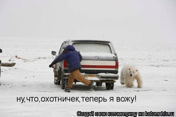 Котоматрица: ну,что,охотничек,теперь я вожу!