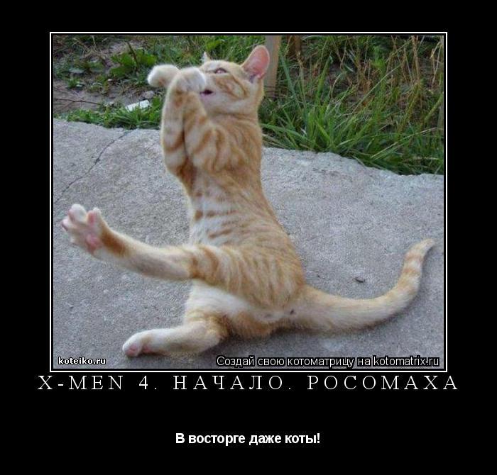 Котоматрица: X-men 4. Начало. Росомаха В восторге даже коты!
