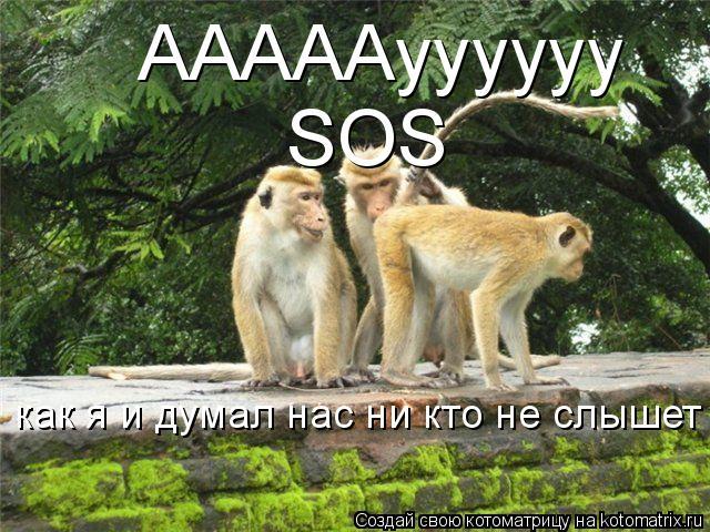 Котоматрица: АААААуууууу SOS как я и думал нас ни кто не слышет