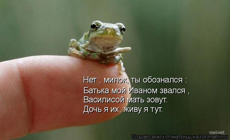 Котоматрица: Нет , милок, ты обознался : Батька мой Иваном звался , Василисой мать зовут. Дочь я их, живу я тут.