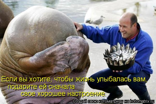 http://kotomatrix.ru/images/lolz/2009/05/03/x-.jpg