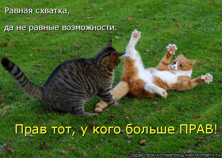http://kotomatrix.ru/images/lolz/2009/05/04/2r.jpg